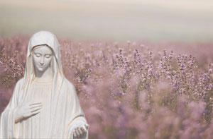 Virgen de Medjugorje Peregrinación